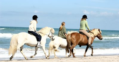 Equestrian and Waterfront Property Finders in the UK